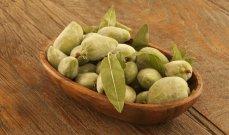 اللوز الأخضر طعمه لذيذ وفوائده مذهلة على الصحة وإنقاص الوزن